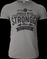 Hobbs T-shirt - Grijs
