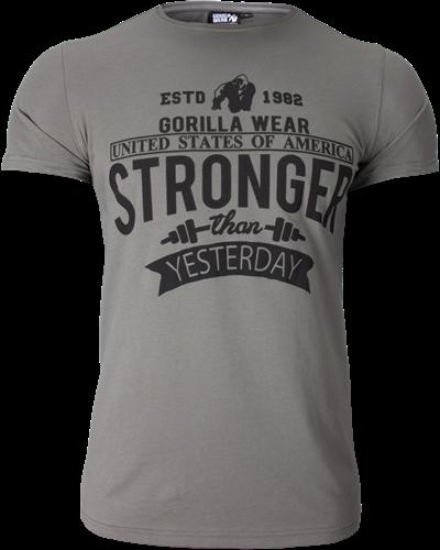 Hobbs T-shirt - Gray