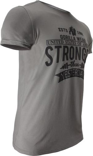 Hobbs T-shirt - Grijs-3