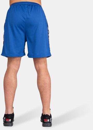 Reydon Mesh Shorts - Blue-3