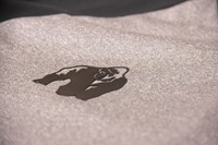 Mineola Long Sleeve - Grijs-3